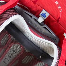 Osprey Talon 11 Backpack Men Martian Red